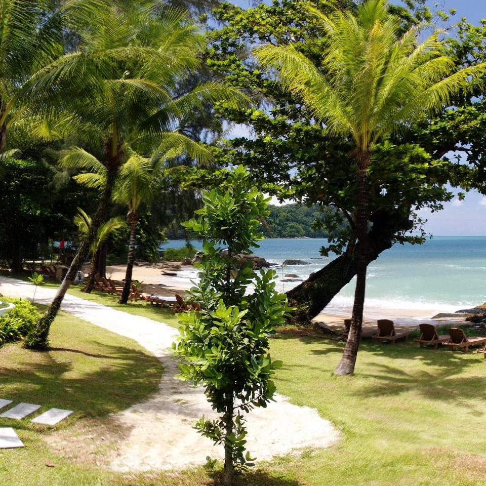 Beach Beachfront Garden Grounds tree grass property Resort plant arecales caribbean Jungle tropics lawn palm shade