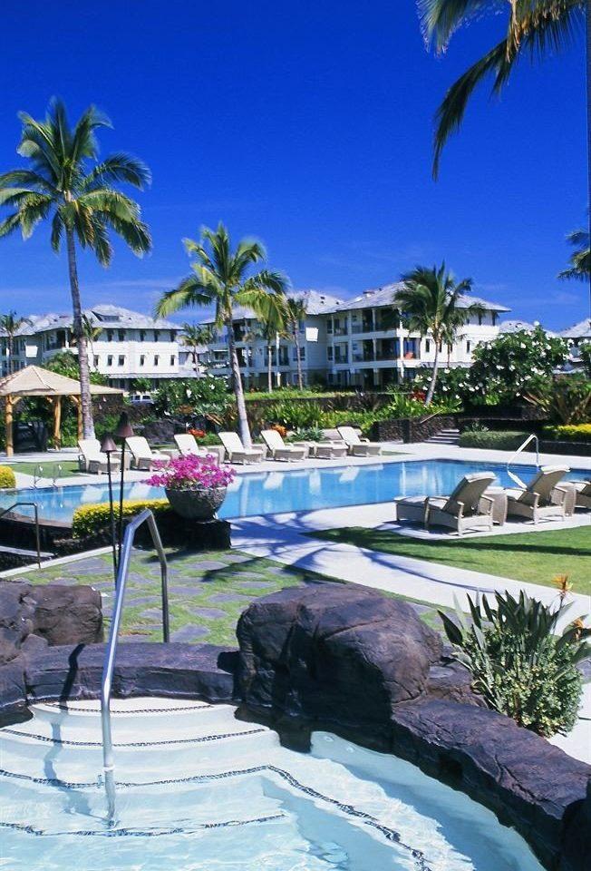 Beachfront Pool tree Resort palm leisure swimming pool arecales Beach plant caribbean marina Lagoon Sea Water park lined shore Garden surrounded
