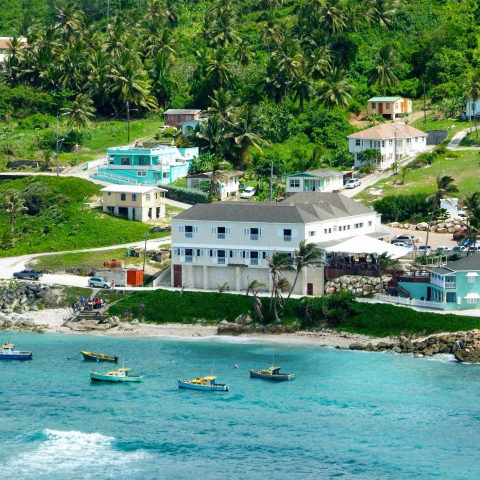 Beachfront Grounds Lounge Ocean Waterfront tree water swimming pool Town Resort Sea Village resort town Beach Lagoon caribbean