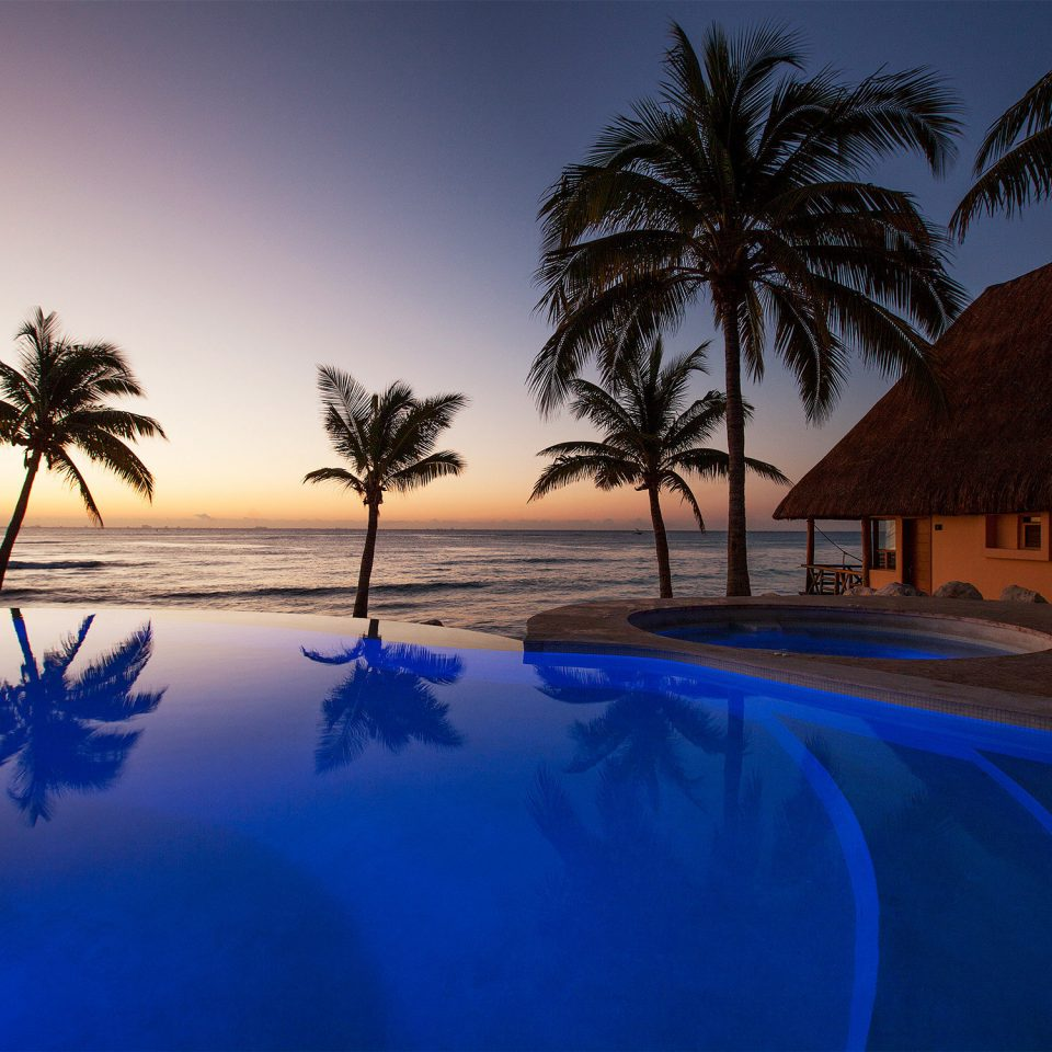 Beachfront Grounds Pool Waterfront tree sky palm Ocean Sea Sunset morning arecales evening dusk plant Beach sunlight swimming pool blue sunrise shade lined Resort shore
