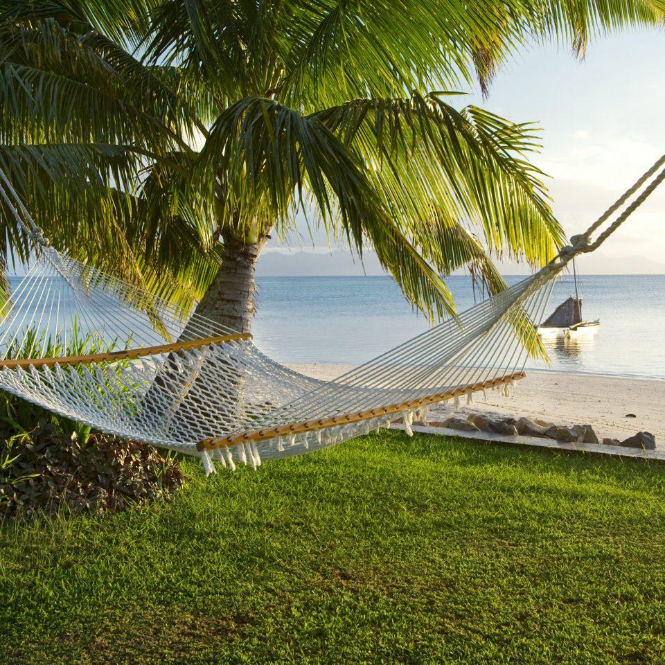 Beach Beachfront Honeymoon Luxury Outdoor Activities Outdoors Romance Scenic views Wellness grass tree water plant hammock Lake arecales tropics leaf sunlight palm Jungle Sea overlooking