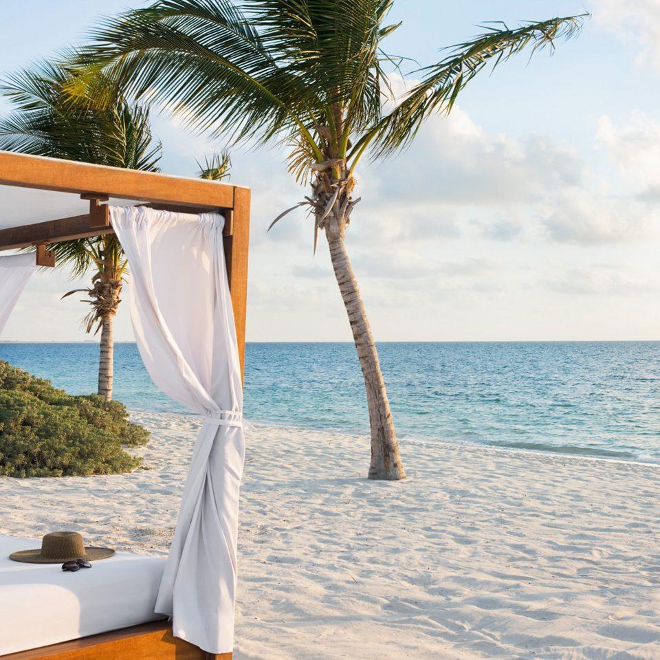 Beach Beachfront Hotels Lounge Luxury Ocean Romance Trip Ideas tree sky water leisure caribbean swimming pool arecales Sea Resort palm sandy shore day