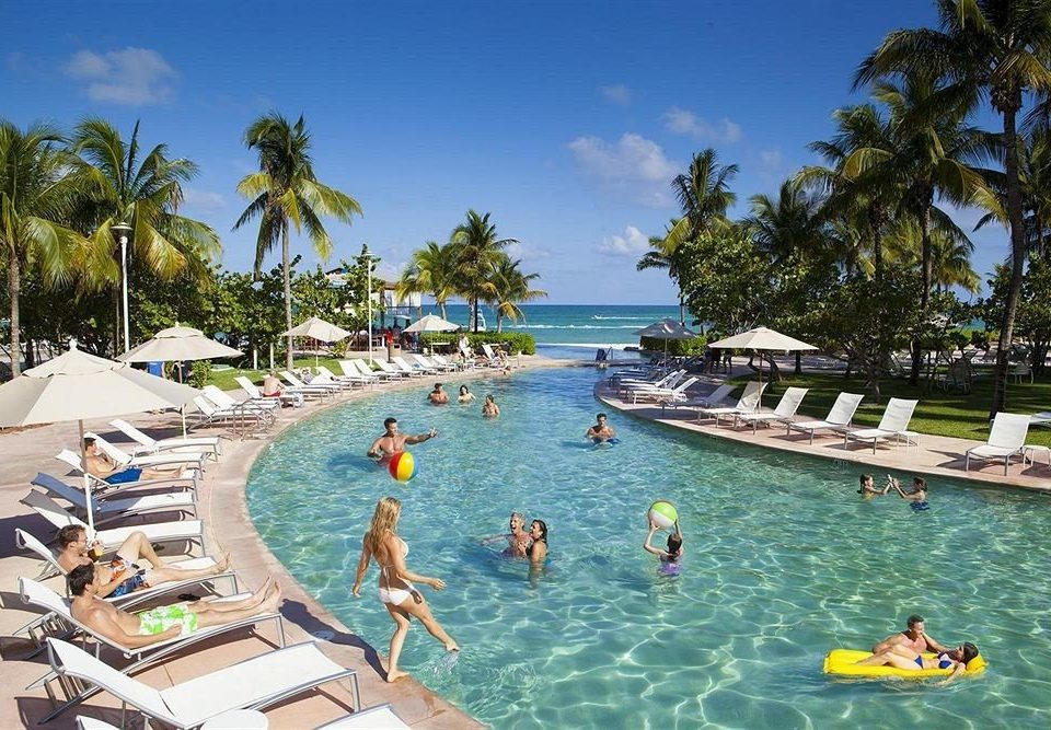 Beachfront Lounge Luxury Pool tree leisure swimming pool Resort Water park Beach resort town Sea caribbean amusement park Lagoon palm swimming