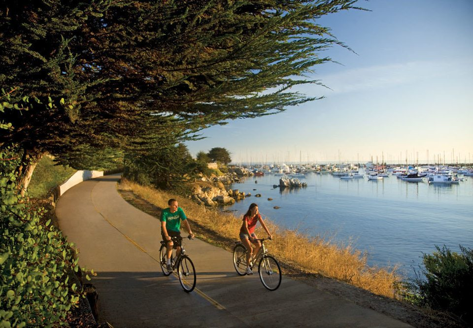 Beach Beachfront Ocean bicycle tree water riding vehicle morning River Lake cycling waterway
