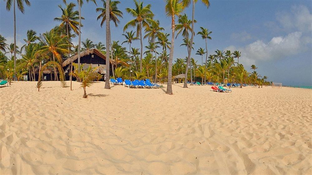 Beach Beachfront Lounge Luxury Ocean sky tree palm umbrella habitat Nature natural environment sand shore sandy aeolian landform Sea dune lined Resort day