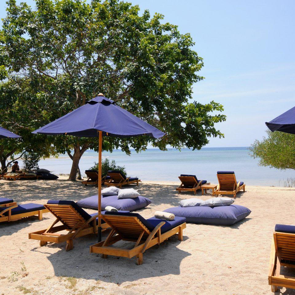 Beach Beachfront Lounge Luxury Ocean umbrella chair tree sky lawn leisure Resort set shade swimming pool day lined swimming