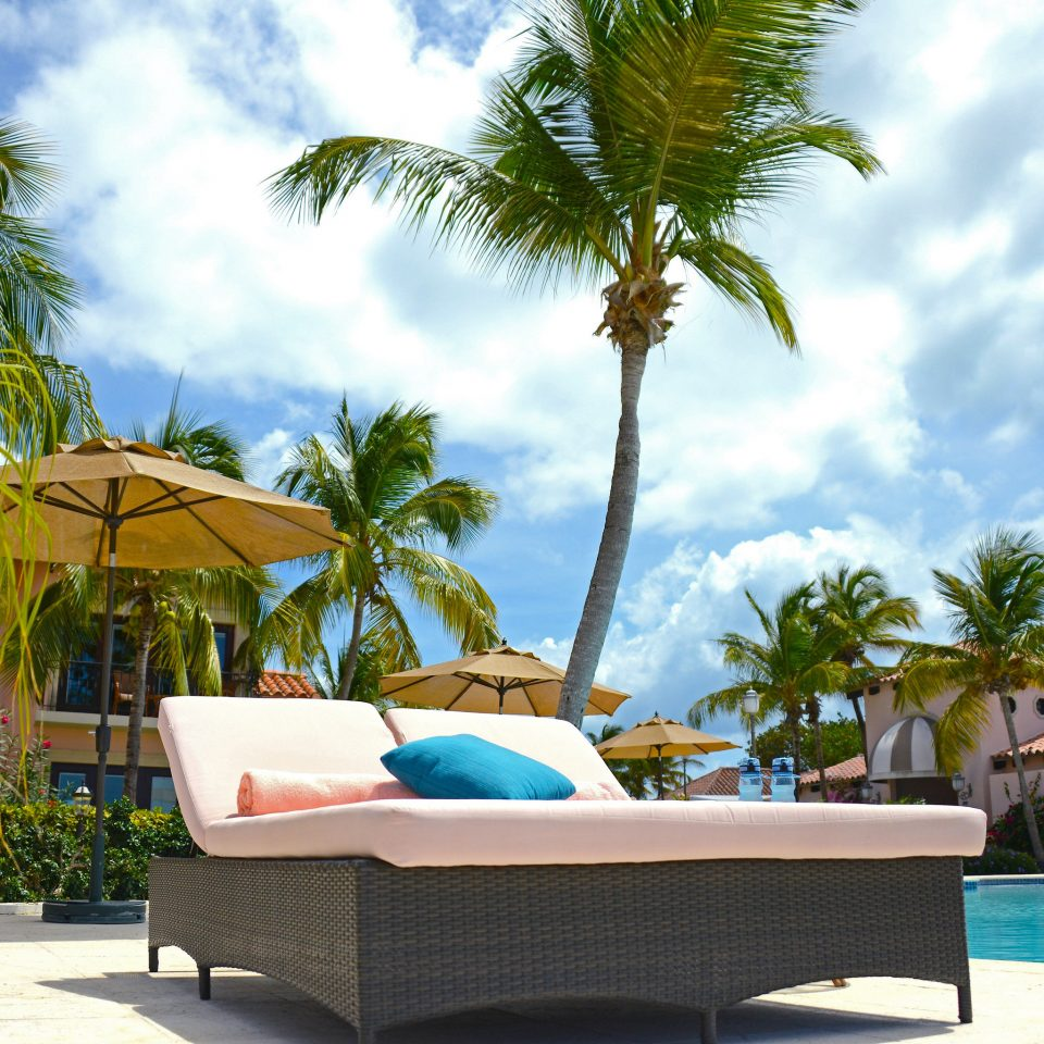 Beachfront Lounge Pool Scenic views tree sky palm leisure property swimming pool Resort caribbean arecales Villa condominium palm family Beach plant