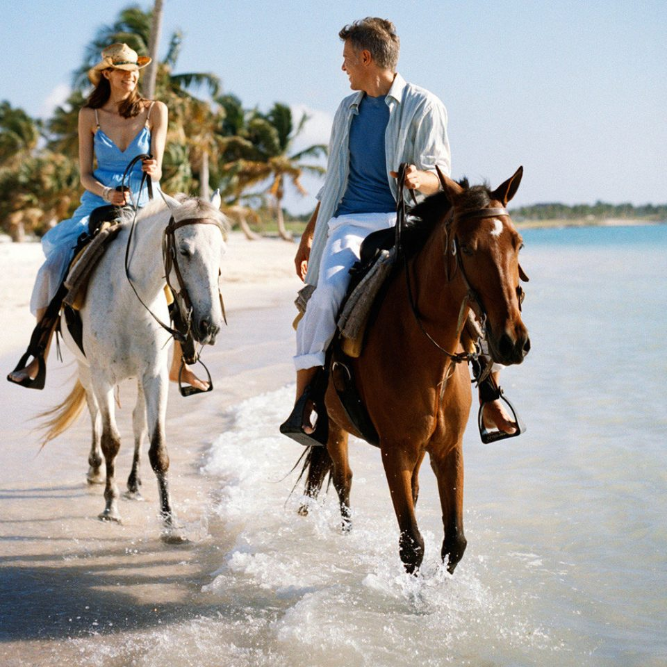 Beach Beachfront Luxury Play Resort sky water riding equestrianism horse sports trail riding equestrian sport animal sports horse like mammal Ocean shore jumping sandy