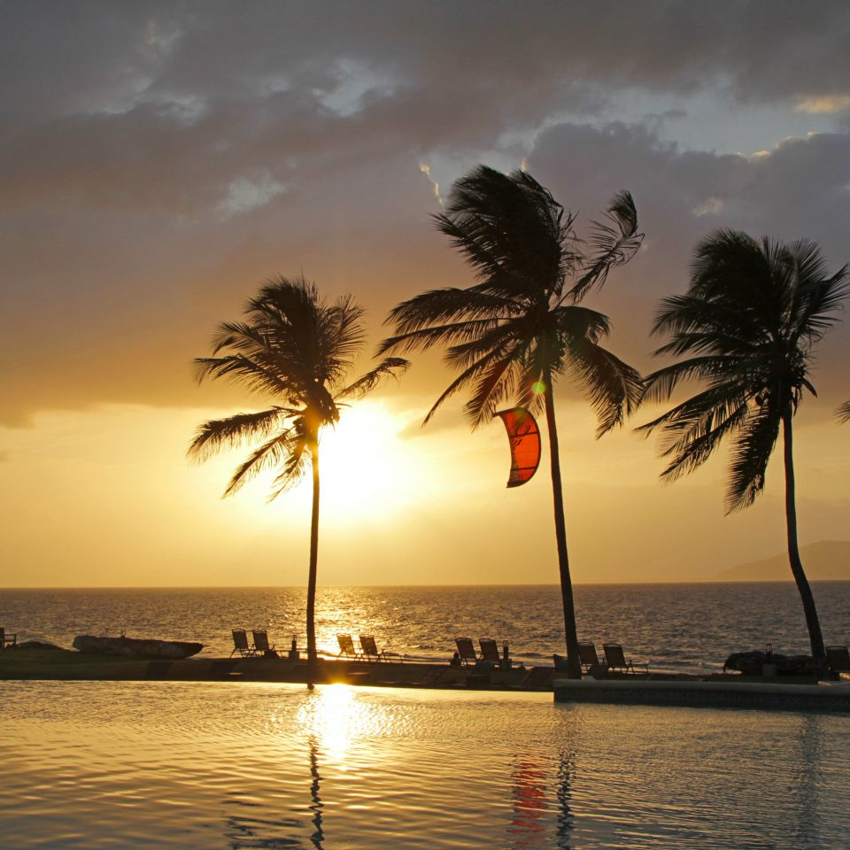 Beach Beachfront Romance Romantic Sunset water tree sky horizon Sea shore Ocean sunrise dusk Sun arecales morning woody plant palm family evening dawn plant sunlight palm tropics sailing vessel sandy