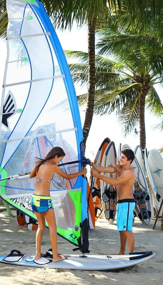 surfing tree Beach ground sailing board windsurfing surfboard young surfing equipment and supplies Boat boardsport wind palm sports sail boarding vehicle surface water sports paddle caribbean