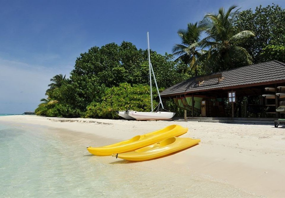 tree sky Boat vehicle boating watercraft Beach watercraft rowing Sea kayak caribbean Coast Resort paddle shore