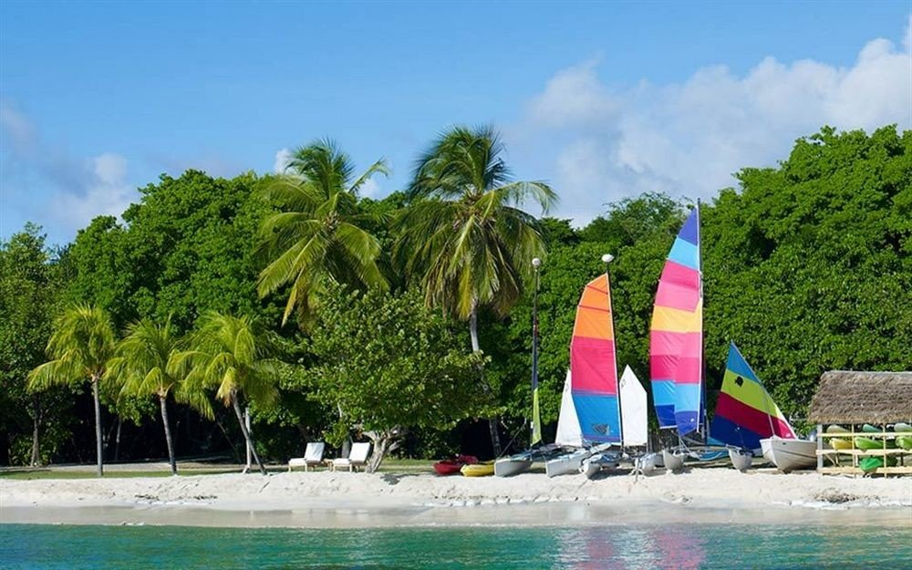 tree sky watercraft Sea vehicle boating Boat caribbean Lagoon Beach Island Water park sailing vessel sandy