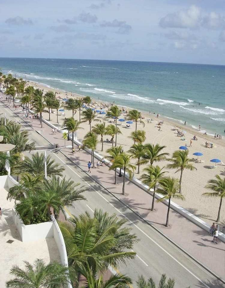Beach Nature shore Coast Sea Ocean caribbean arecales Resort walkway cape City sand palm lined