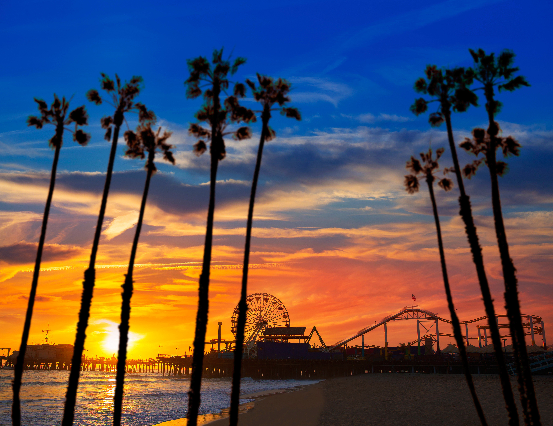 City sky Sunset water tree horizon Beach sunrise cloud dusk dawn morning Sea evening Ocean arecales afterglow Coast woody plant sunlight palm family Sun plant