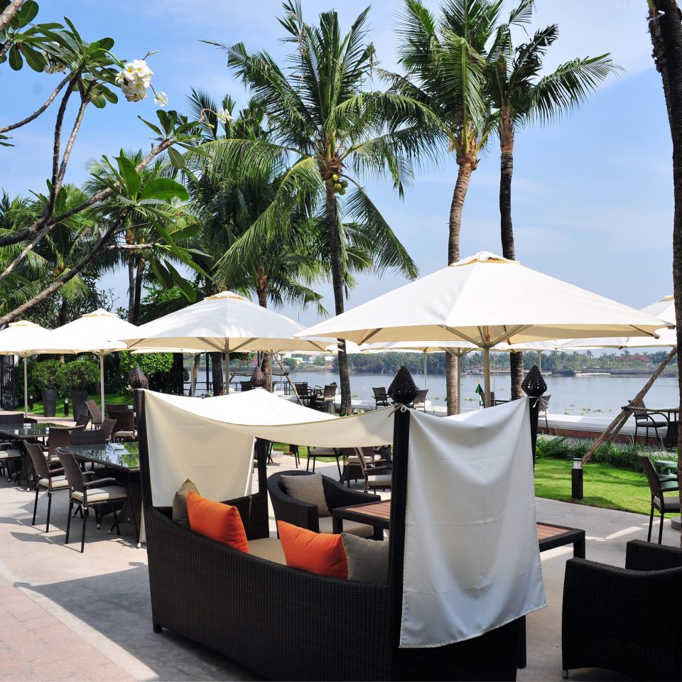 City Dining Drink Eat Grounds Jungle Outdoors River Waterfront tree sky leisure restaurant Resort Beach palm lined