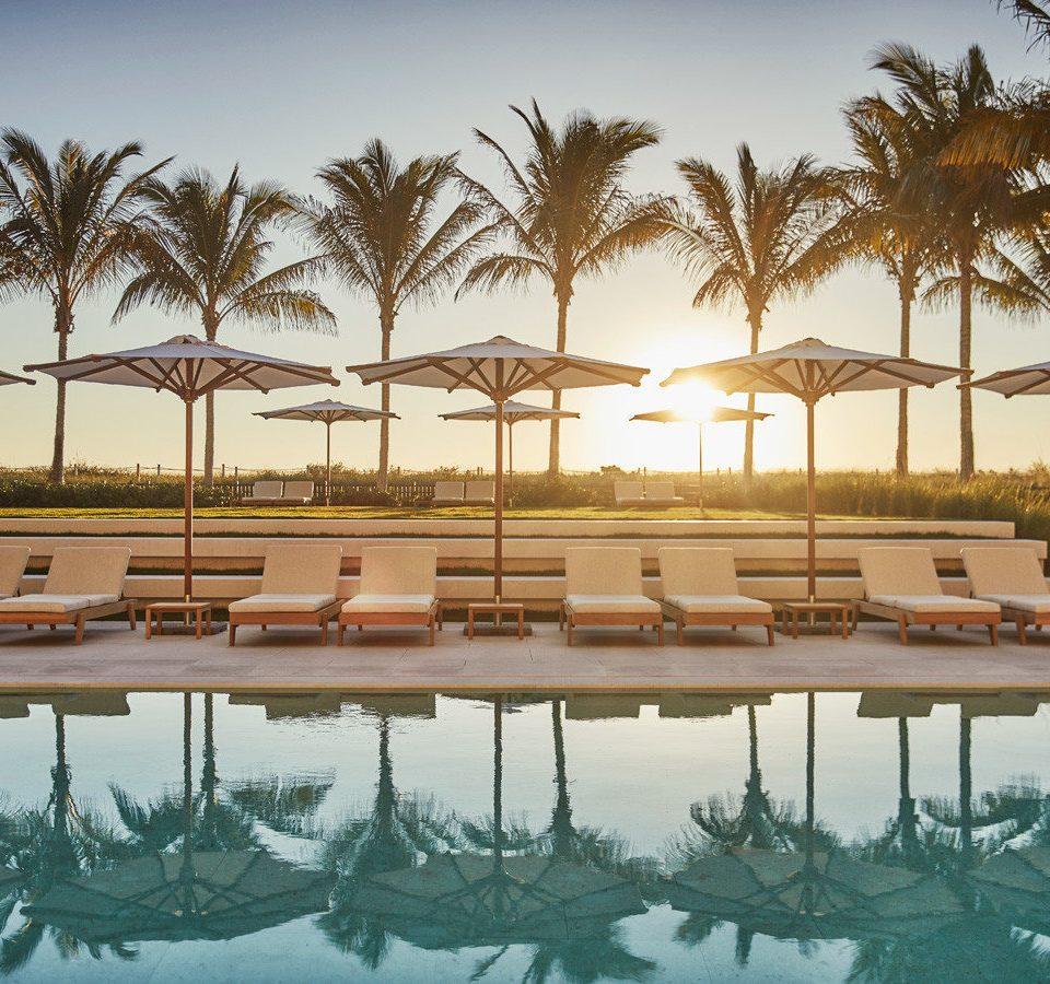 City Hotels Luxury Miami Miami Beach Trip Ideas Winter tree sky Beach row Resort swimming pool Ocean arecales dock marina Sea lined Lagoon long palm line