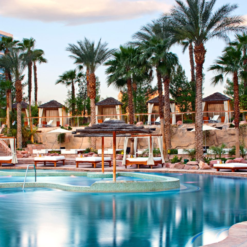 City Outdoors Play Pool Resort tree sky water chair swimming pool leisure property Beach resort town swimming arecales lined Water park palace Villa palm surrounded