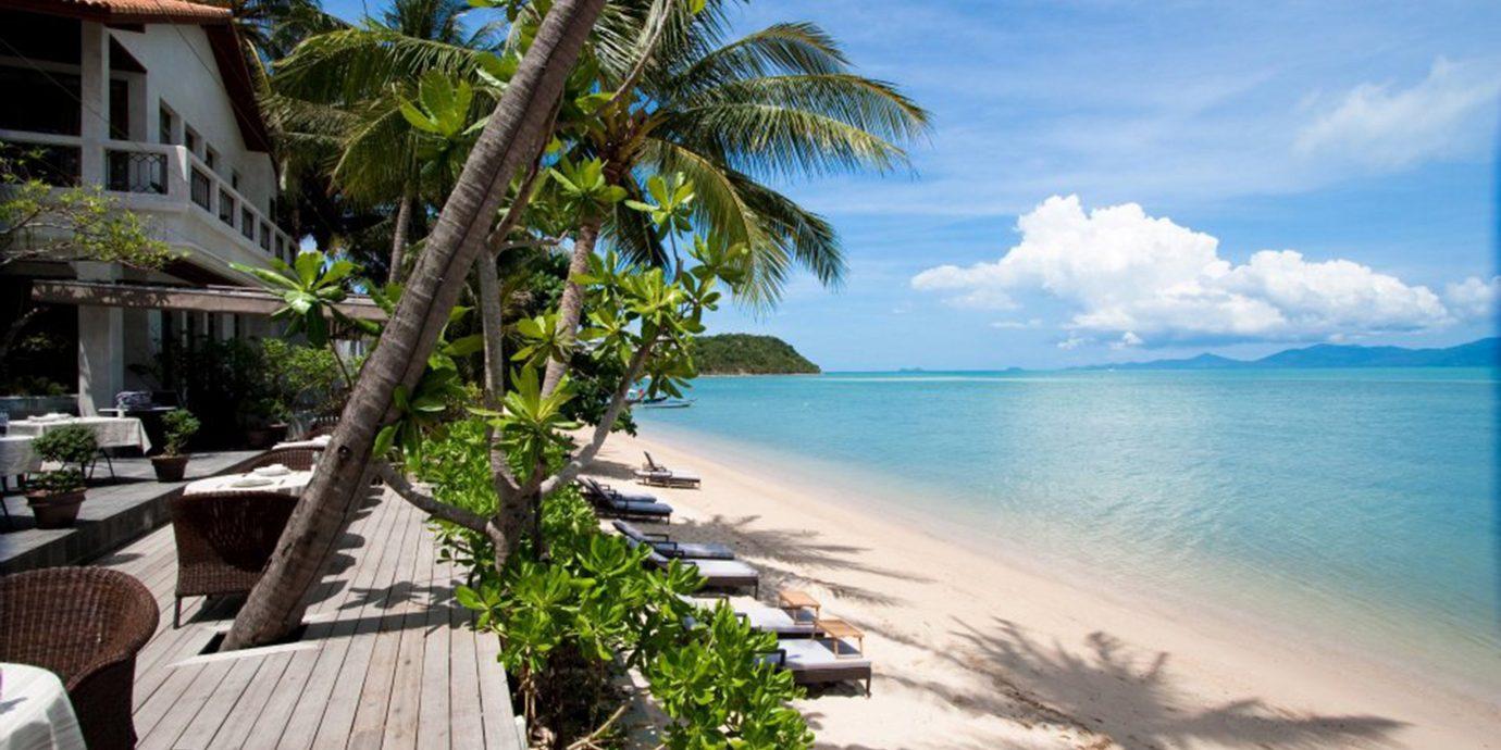 Beach Deck Honeymoon Jungle Romance Scenic views Tropical tree sky water caribbean Sea Ocean Resort arecales Coast tropics Lagoon Island shore palm lined