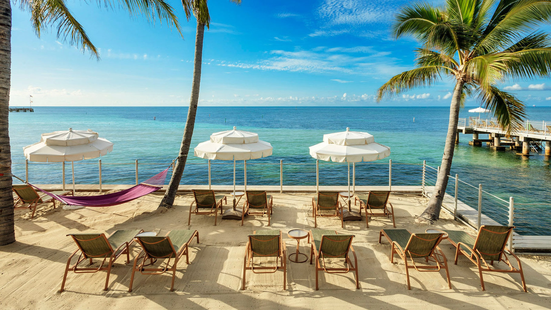water umbrella chair sky tree Beach lawn palm leisure caribbean Sea Resort Ocean lined Coast arecales set Pool shore Deck tropics empty sunny swimming line shade