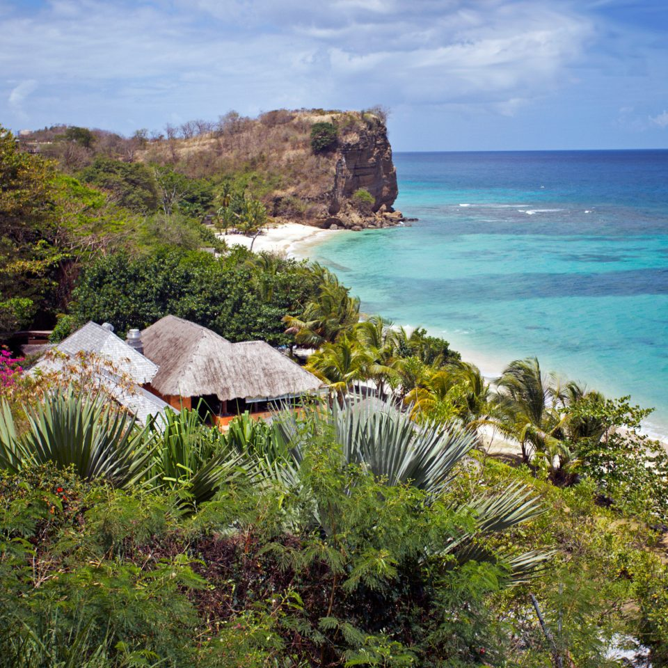 Beach Eco Grounds Island Outdoor Activities Scenic views Wellness tree water Nature Coast Sea Ocean shore caribbean tropics cliff cape landscape terrain cove lush