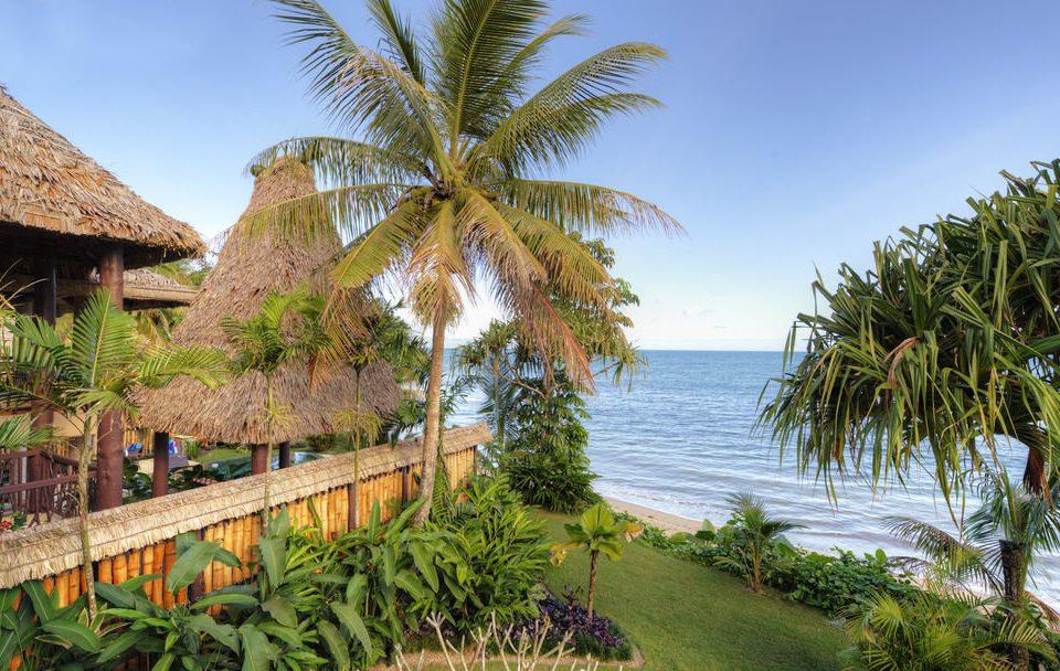 sky tree palm property plant Beach Resort arecales tropics Coast palm family caribbean Sea Jungle Garden