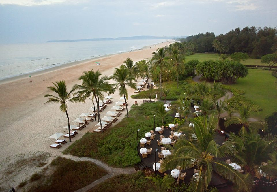 sky grass Nature Beach Coast Sea Resort arecales tropics plant overlooking shore Garden