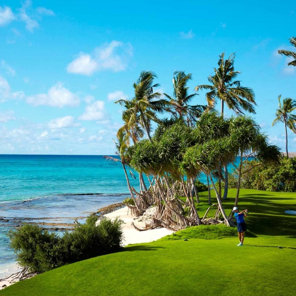 Beach Golf Island Ocean Outdoor Activities Resort Tropical tree sky grass water caribbean palm arecales Sea Coast tropics shore