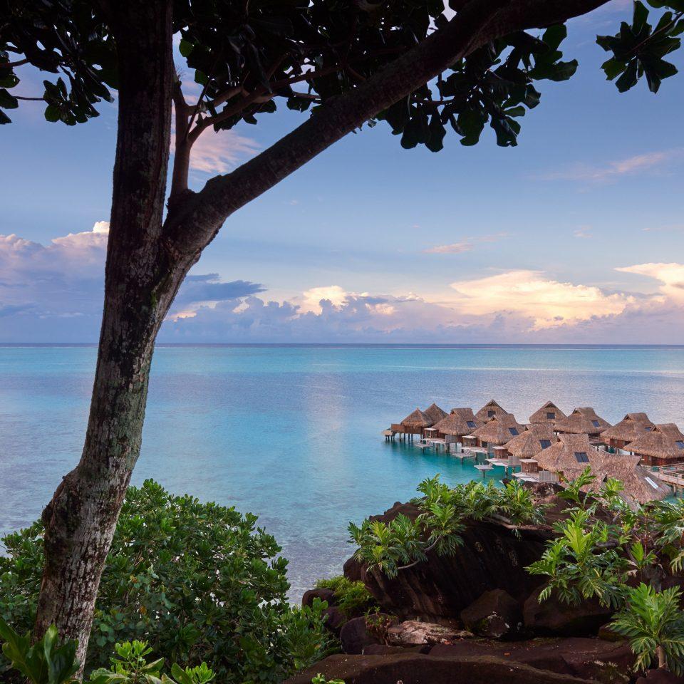 Hotels Trip Ideas tree water sky Sea tropics River Coast Lake shore Ocean promontory Nature arecales overlooking horizon cloud palm tree Beach landscape plant Island shade