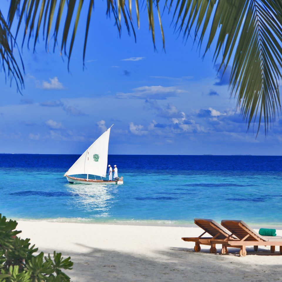 water Beach sky tree Ocean Sea palm caribbean chair shore Coast tropics arecales Nature Lagoon Island cape atoll lined sailing vessel sandy swimming overlooking Resort