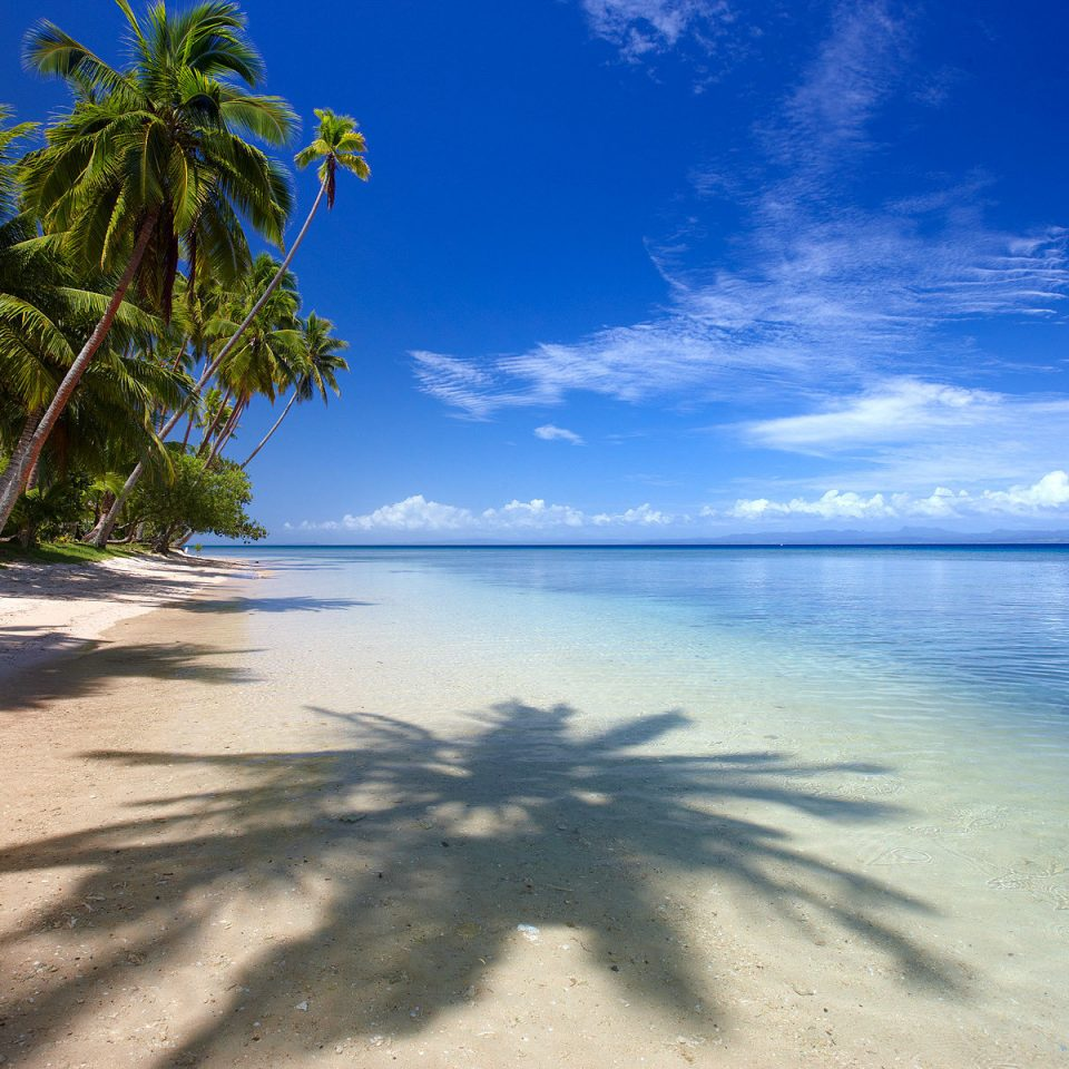 sky water Beach Sea tropics ground Nature shore caribbean Ocean coastal and oceanic landforms palm tree arecales horizon cloud daytime Coast tree morning calm Island sunlight sand Lagoon computer wallpaper plant landscape islet palm sandy sunny shade day