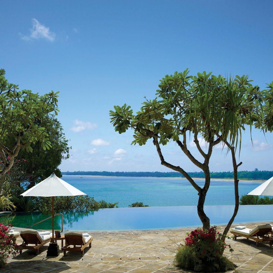 Beach Ocean tree sky water umbrella Sea caribbean Resort tropics arecales Coast Lagoon Island shade swimming pool plant shore sunny day sandy