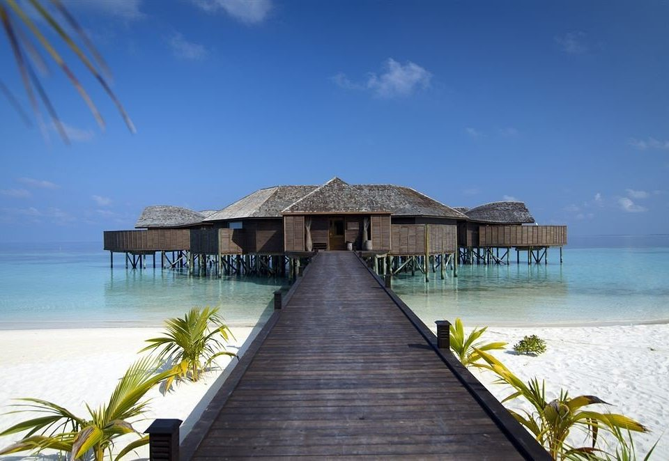 sky water pier scene Beach Sea Ocean caribbean Coast shore Resort wooden Island tropics Lagoon palm