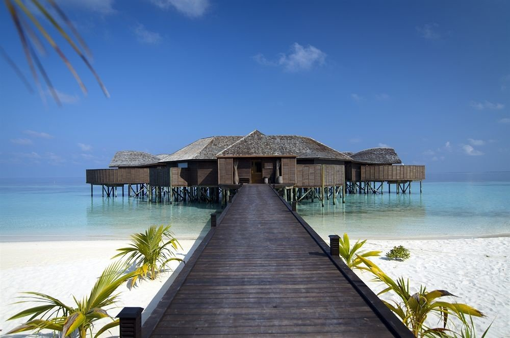 sky water pier scene Beach Sea Ocean caribbean Coast shore Resort wooden Island tropics Lagoon palm