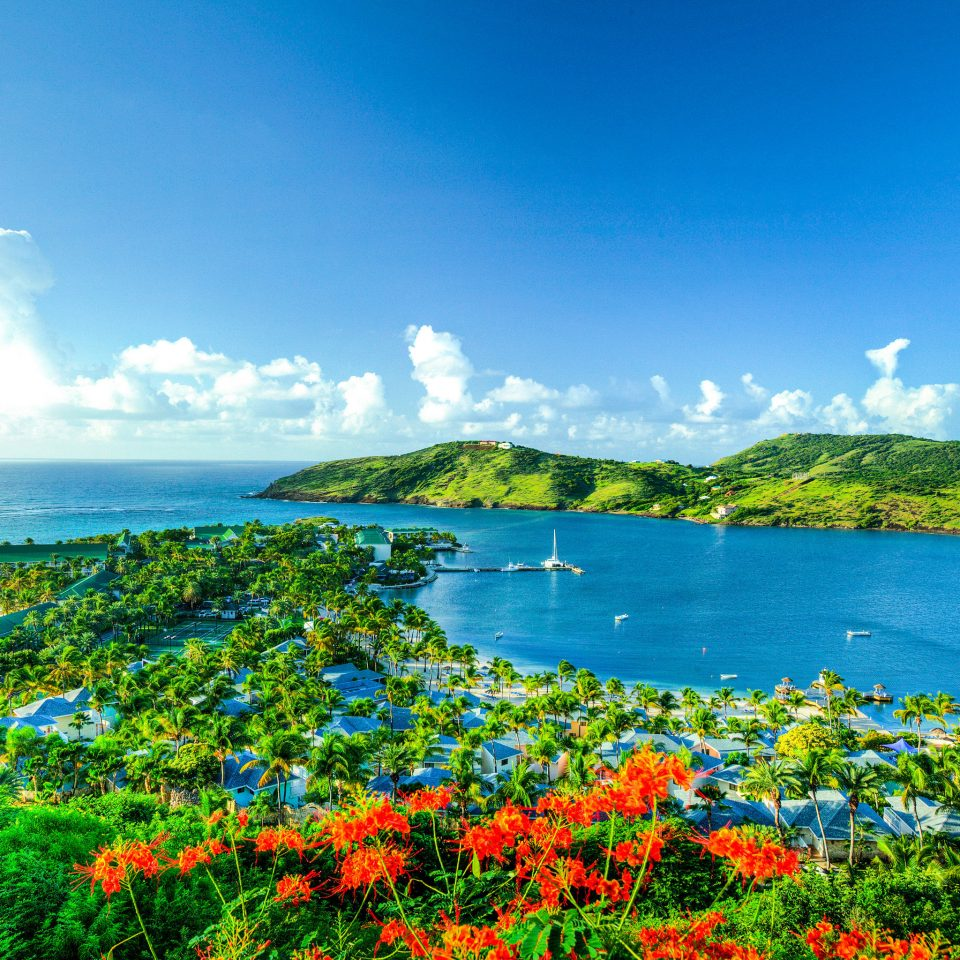 water sky grass Nature Coast Sea horizon shore ecosystem tree Lake Ocean flower cloud meadow hill landscape mountain sunlight Beach overlooking Island Lagoon plant pond beautiful field highland