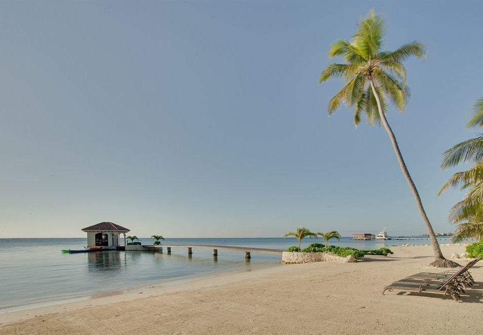 sky water Beach shore palm Nature Sea caribbean Coast Ocean arecales tropics Island Lagoon sandy cape palm family sand