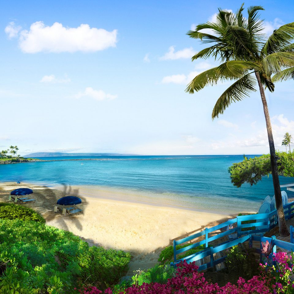 tree sky water Nature tropics Beach Sea caribbean Resort shore palm tree palm arecales Ocean Coast coastal and oceanic landforms leisure Lagoon cove landscape plant Island overlooking lined sandy swimming shade
