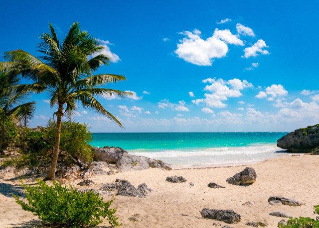 sky water Beach Nature shore palm Sea Ocean Coast caribbean tree tropics arecales Island Lagoon cape islet cove sandy shade