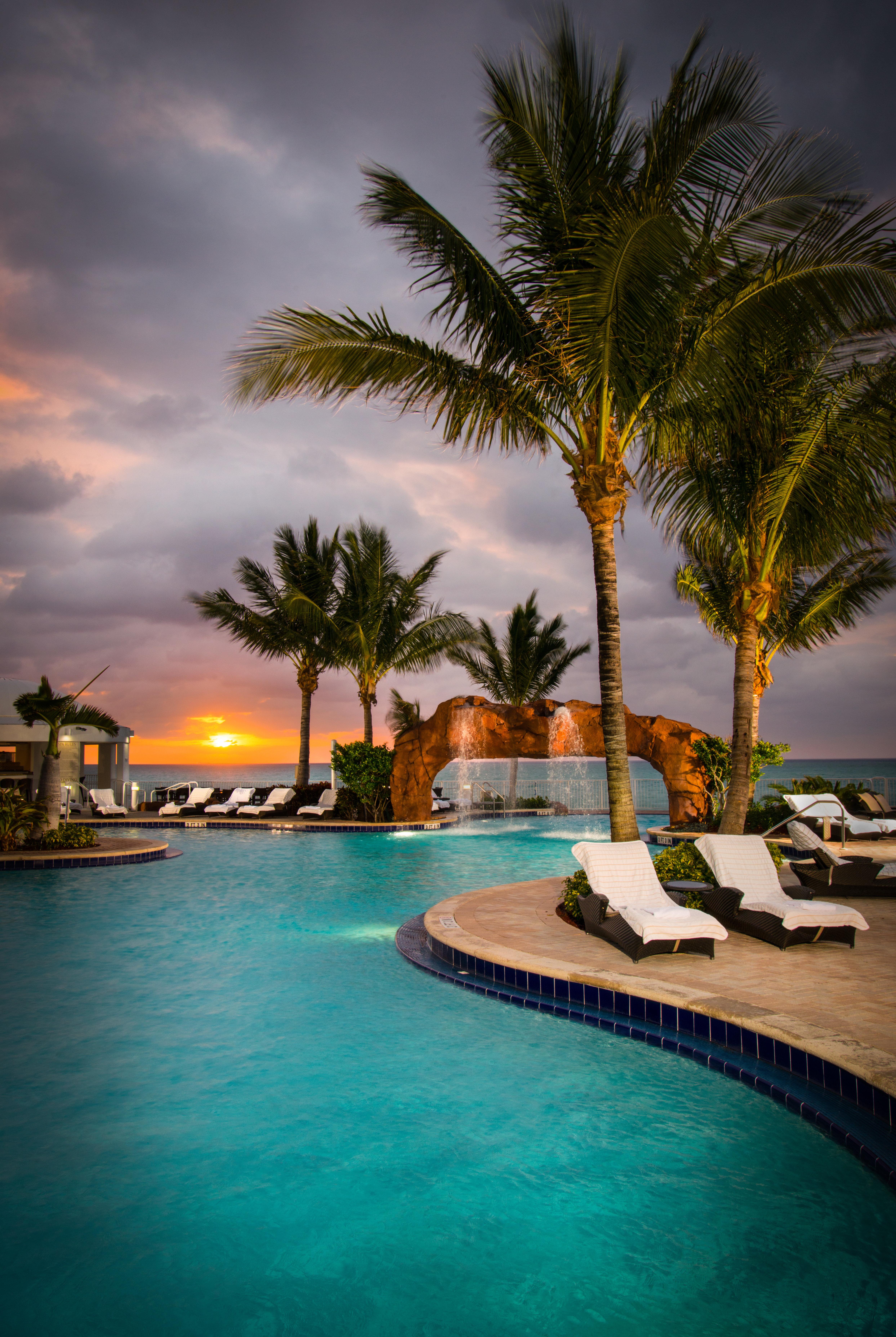 water tree Resort Sea Ocean swimming pool Beach caribbean arecales tropics palm family Coast Lagoon palm dusk Sunset lined surrounded Island