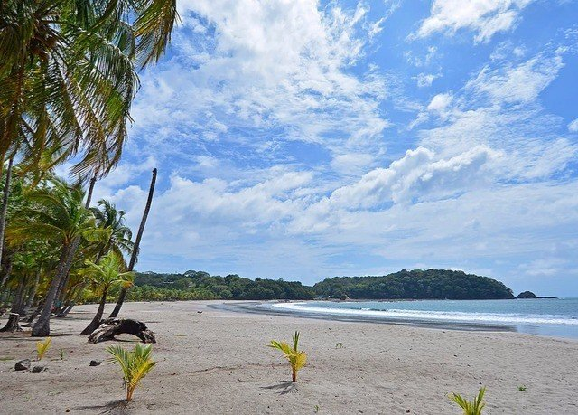 sky water Beach shore Sea Coast Ocean Nature plant tropics cape caribbean Lake cove tree Island sandy day