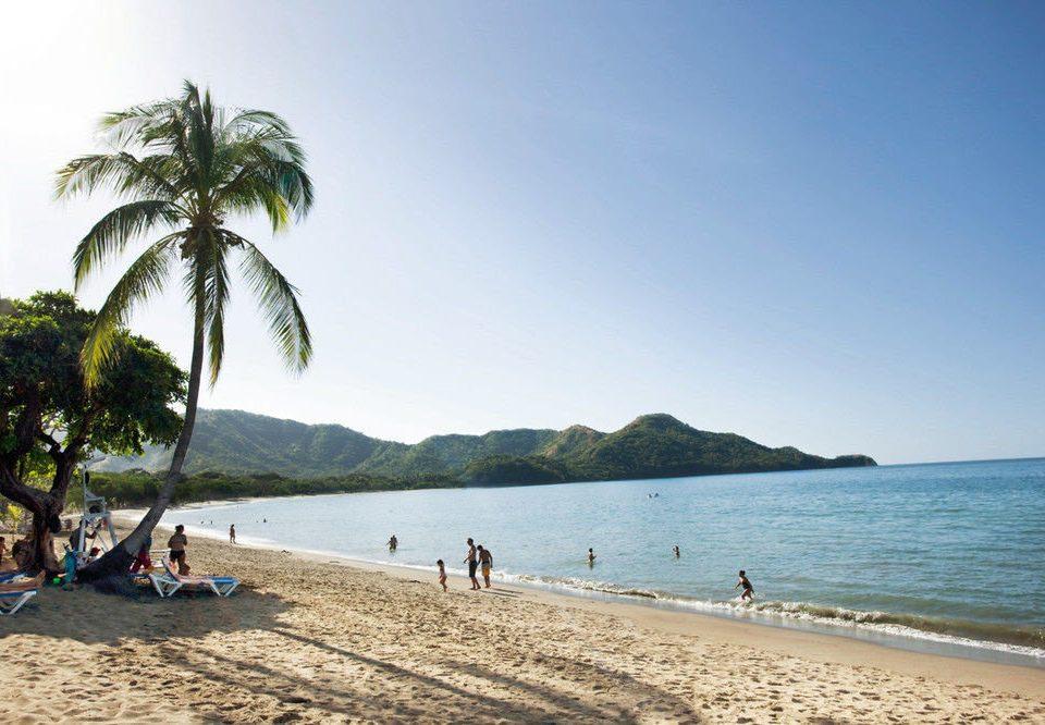 water sky Beach shore Nature Sea Ocean Coast arecales caribbean cape palm tropics sand Island sandy lined day enjoying sunny