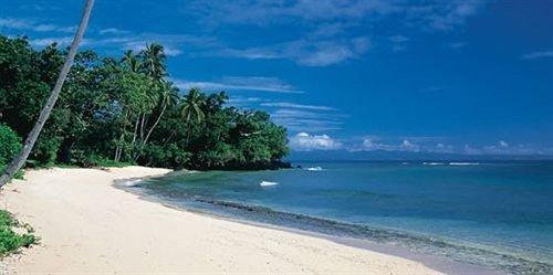 sky water Beach tree Nature Coast shore caribbean Sea Island sandy day
