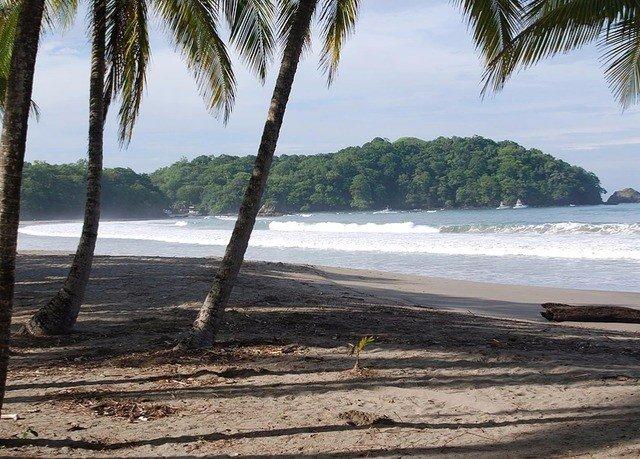 water sky Beach tree ground Ocean shore plant Coast Sea palm arecales tropics sandy sand cove shade Island