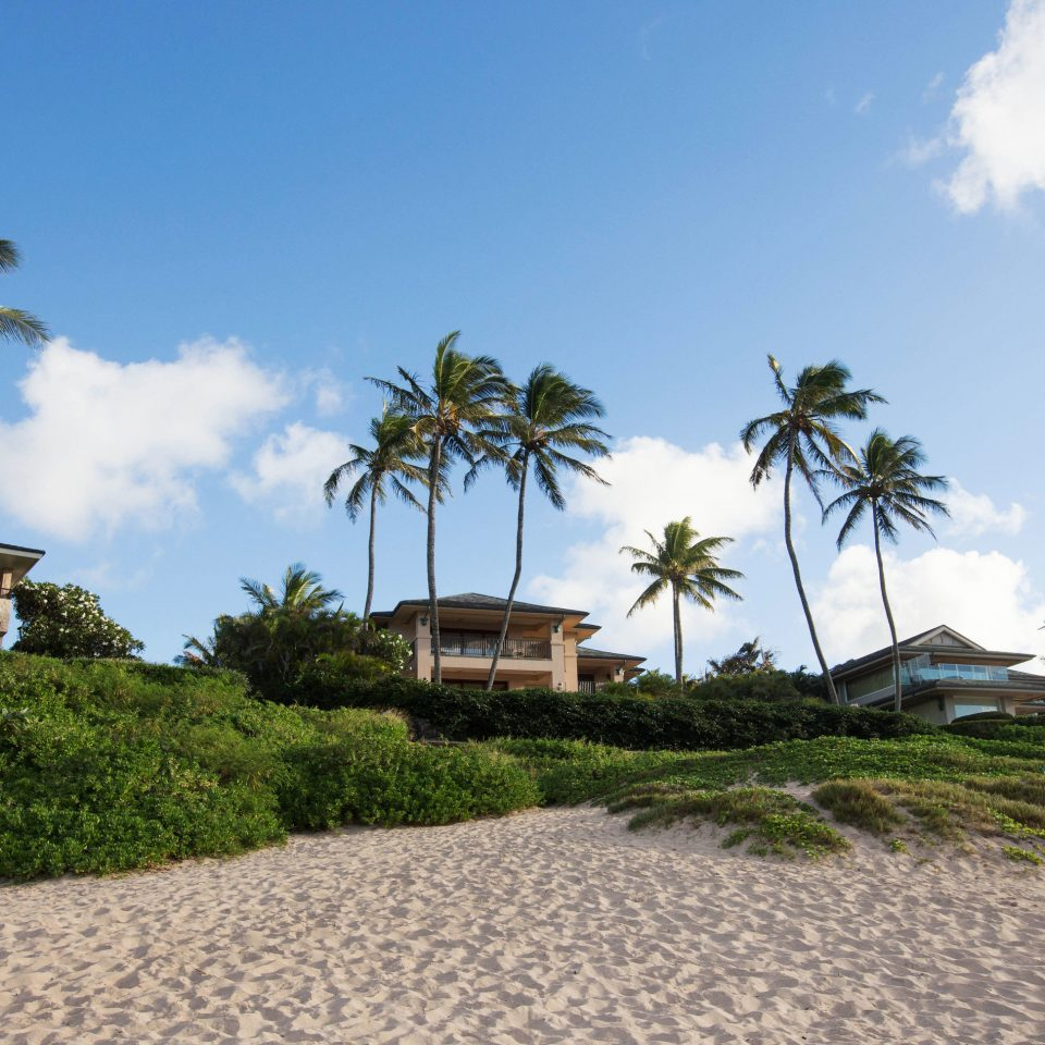 sky tree Beach property palm Sea caribbean Coast Resort arecales Ocean plant palm family cape walkway tropics Island Villa Village shore sandy