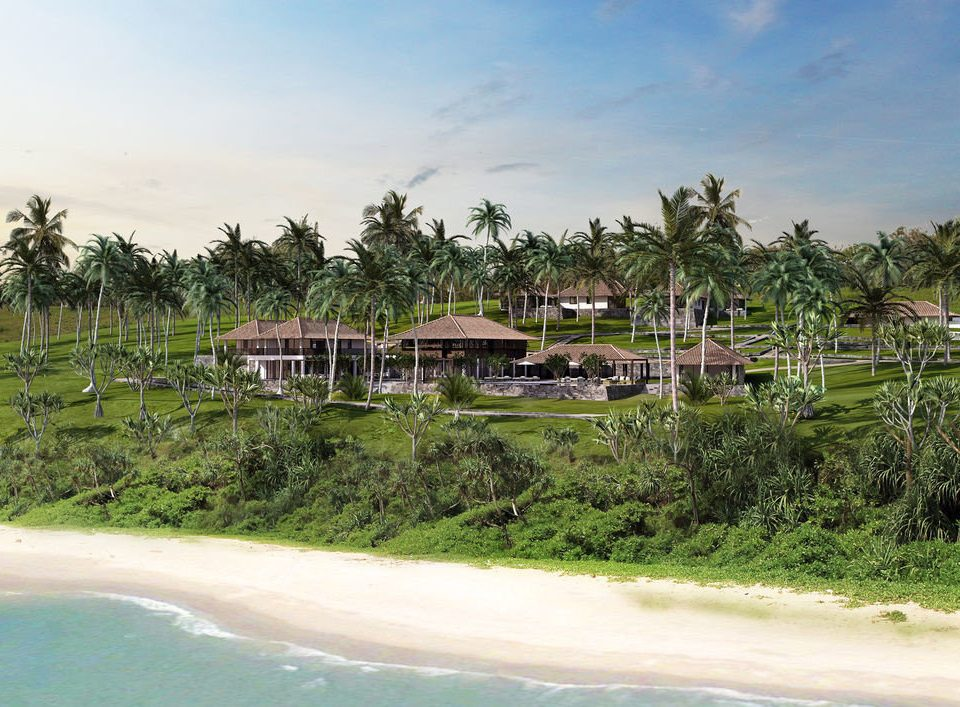 tree grass Beach Resort arecales Coast Sea tropics Lagoon Jungle shore