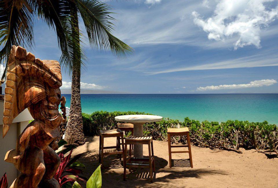 sky ground water Beach tree caribbean tropics Ocean Sea Nature arecales Resort palm family Coast Jungle travel palm plant shore sandy shade day