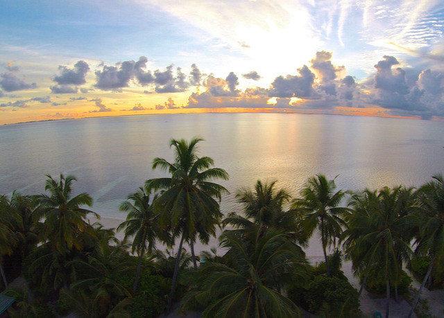 water Nature palm tree horizon Sea Coast Lake cloud arecales shore Ocean morning sunlight caribbean tropics Sunset Beach plant Lagoon dusk