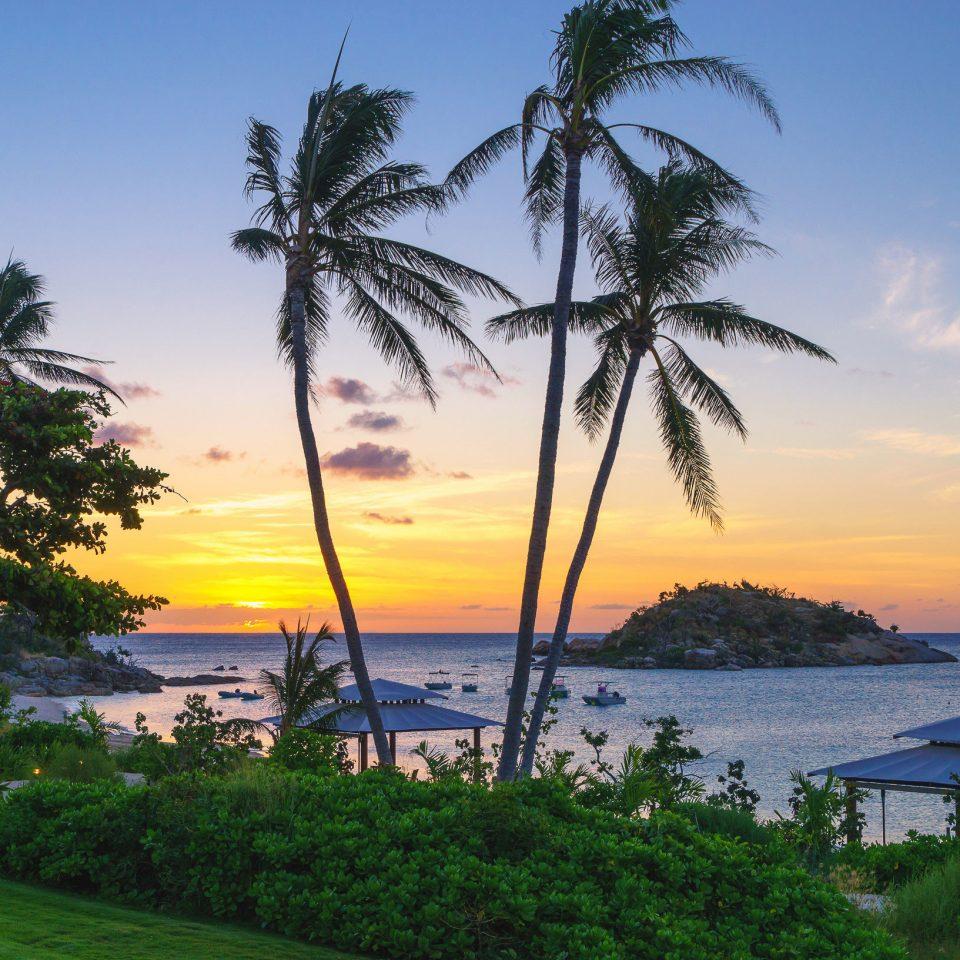 tree water sky Beach plant shore Sea Ocean Lake horizon Coast arecales caribbean tropics palm family Sunset Lagoon cape palm dusk beautiful overlooking