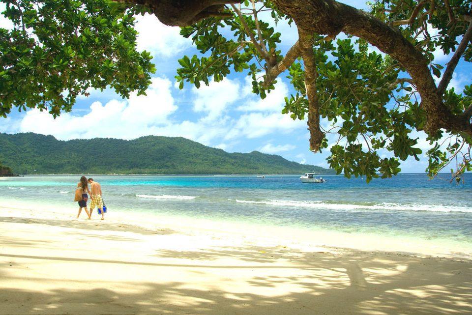tree water Beach sky Nature shore Sea caribbean Ocean Coast tropics Lagoon sandy