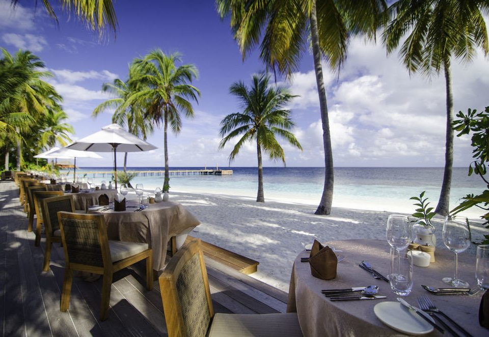 tree Beach Resort caribbean palm Ocean Sea arecales vehicle Coast marina tropics restaurant dock Lagoon lined dining table