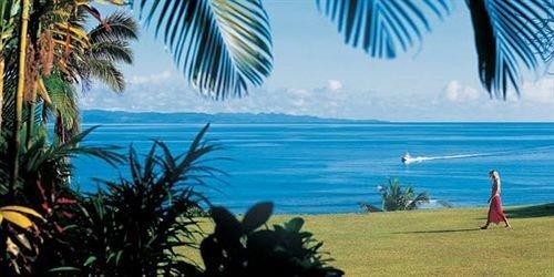 Beach palm caribbean tree Ocean arecales plant Sea Coast Resort tropics Lagoon shore sandy day
